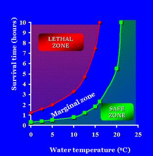 Curva con i tempi di sopravvivenza in mare in base alla temperatura