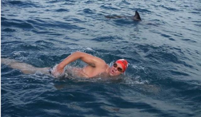 Adam Walker salvato da alcuni delfini poco prima di essere attaccato da uno squalo