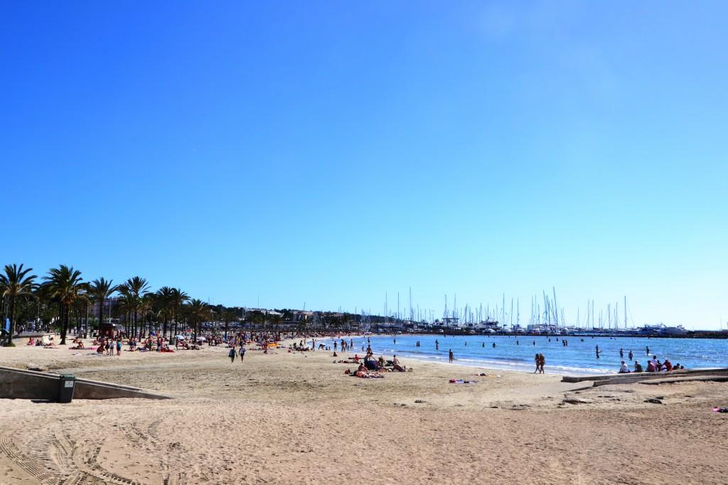 La spiaggia di S'Arenal, meta turistica prediletta da giovani, soprattutto tedeschi, in cerca di sfrenati divertimenti. Sullo sfondo il porto di El Arenal che ha ospitato la flotta di 15 Lagoon