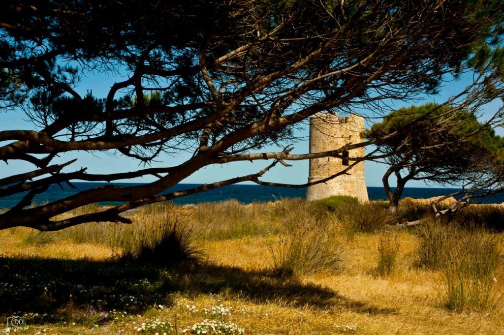 La torre costiera di La Caletta, una delle molte delle coste sarde. Foto Domenici De Luca