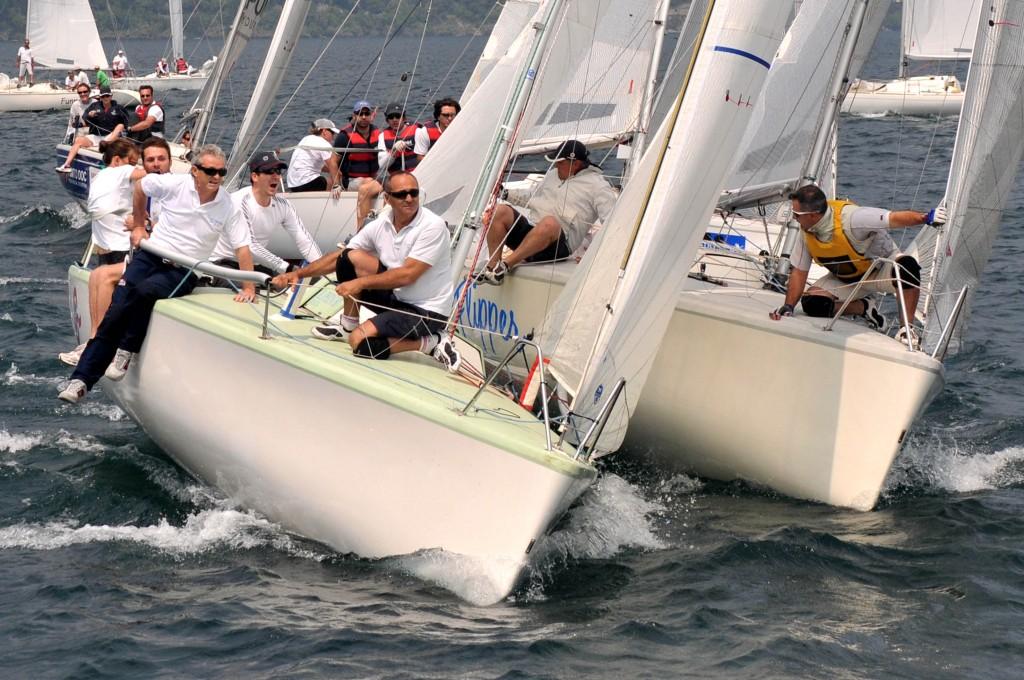 Dolphin 81 in regata