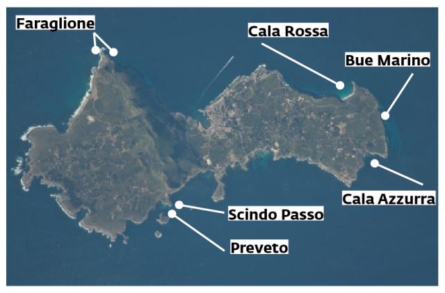 I campi boe, nuovi o rinnovati, nell'isola di Favignana