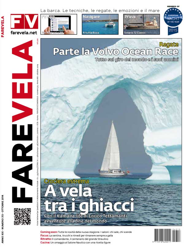 cover 313