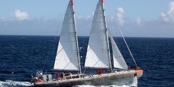 Lo schooner Tara in navigazione in Mediterraneo