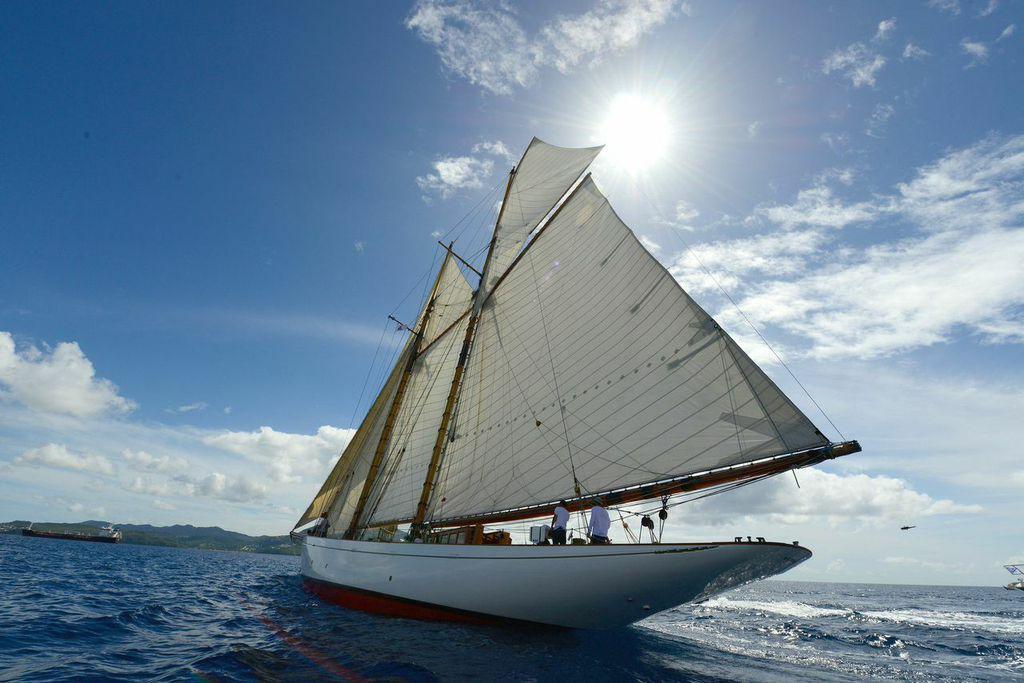 Altair all'arrivo in Martinica